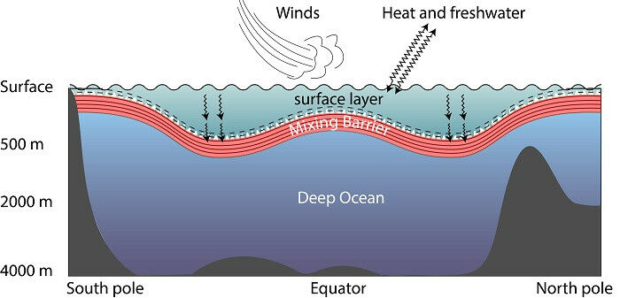 Basic diagram of ocean's vertical structure: the surface layer is churned