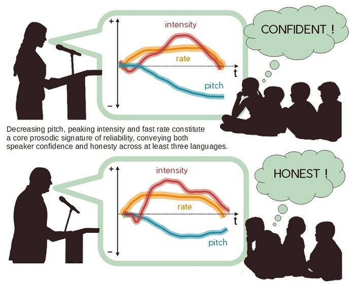Two types of judgements (certainty, honesty) are based on a single acoustic sign